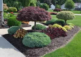landscaping ideas in Woodpark